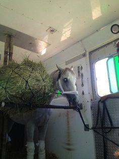 Hansen on his way to the Iowa Derby