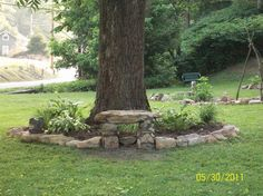I also like the stone bench and large stones around the tree.