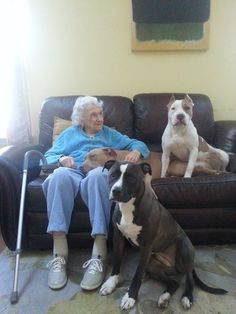 This young lady celebrated her 91st birthday surrounded with her great grand pits! Two of which are Jackson Shelter alumni. Pit bull lovers come in ALL ages.