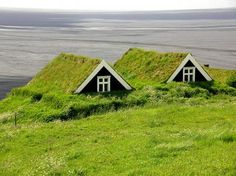 green roofs, iceland, unusual homes, turf hous, exotic places