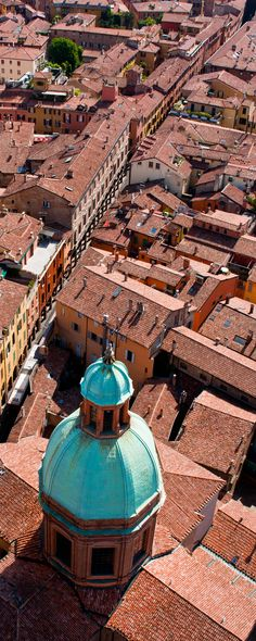 Bologna cityscapes, red, bologna, the view, roofs, adelini riccardo, rooftop, italy, itali