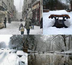 The Homestead Survival: Winter Preparedness Tips