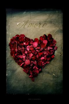 holiday, amor, petal heart, valentine day, shades of red, red roses, ana rosa, flowers, rose petals