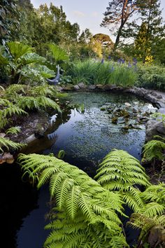 The Bird Pond in the garden at Greenway, Devon, which was the holiday home of the crime writer Agatha Christie
