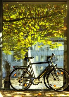 Bicycle by Wolfgang Staudt, via Flickr [orton?????]