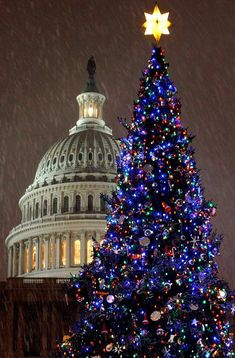 The Capitol Christma