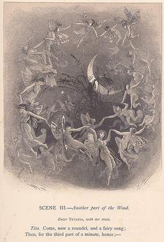 Illustration by Alfred Fredericks.