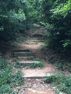 Lantau Trail, section 2. Hiking Hong Kong.