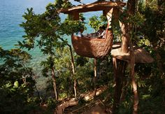 Already dreaming of the weekend? Dinner for two right here sounds nice!  The Soneva Kiri resort on the untamed island of Koh Kood in eastern Thailand has amazing private 'treepod' dining - once seated in the bamboo pod at ground level, you're hoisted six metres up into the rainforest while an acrobatic waiter swings between the trees on a zip line to deliver baskets of wine and gourmet delights. Sign us up! www.mylookbook.com.au  #travel #thailand #luxury #dining #bucketlist #summer