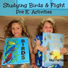 Pre K Learning Activities: Birds & Flight - Mud Hut Mama
