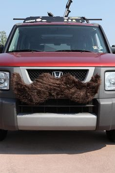 cars need mustaches too.