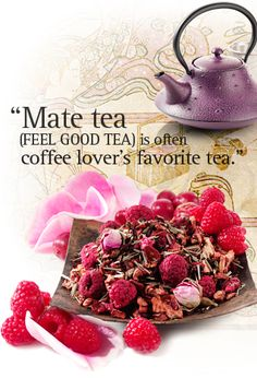 Mate Tea Info This feel good tea is often coffee lover's favorite tea since it has the same amount of caffeine as a cup of coffee. The energy effect is similar to that as drinking coffee but without the jitters.