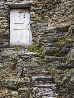 Rock Steps Lead to Old Wooden Door, Vernazza, Italy  Photographic Print  by Dennis Flaherty    These are the sorts of steps that have been in place forever and add such character.