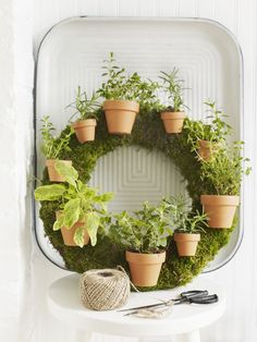 Sweet Paul's Herb Wreath... much easier than it looks.  My favorite project from my Summer issue! @Sweet Paul Magazine
