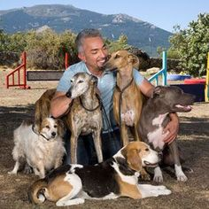 Cesar loves his dogs.