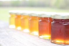 A Honey Tasting  --  One sampler of  6 Varieties of Honey's from the Hive Ohio Proud.