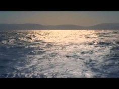 ▶ Dolphins remake - YouTube