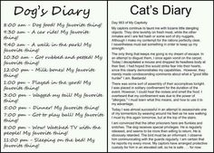 """This is quite close to what I imagine my dog and cat """"discussing"""" when we leave the house..."""