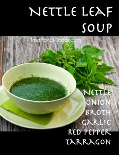Nettle Soup @ Traditional-Foods.com