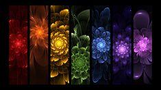 Rainbow Flowers by ~Mythara on deviantART