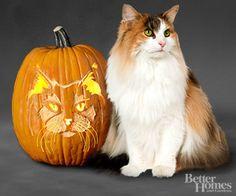 Pumpkin Cat Stencils