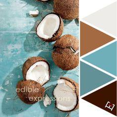 Tropical Coconuts Color Palette