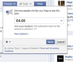 Promoted Posts on Facebook - what do you think?