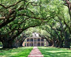 Oak Alley Plantation ~ Vacherie, Louisiana