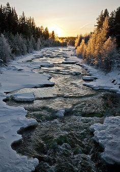 Frozen Stream, Funäsdalen, Sweden.