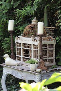 birdcag, candl
