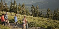 Geocaching is an ideal family activity.