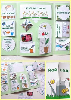 "Лэпбук ""Домашняя метеостанция"" Lapbook Pinterest"