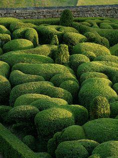 Jardins de Marqueyss