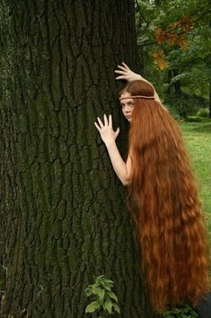 Red woodland long hair