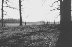 Mound Builders: Early Native American Iroquois Mound Builders in Jay County, Indiana