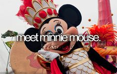 I have met Minnie Mouse