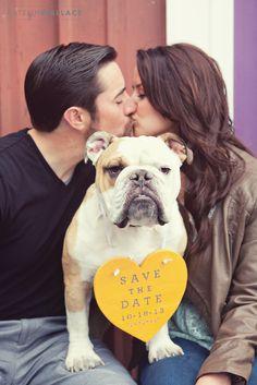 http://www.amandamarievents.com/blog/11-brittanny-mike-engagement-katelin-wallace-photography #engagement #bulldog #love #weddings #photography #LABcostamesa