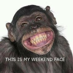 This Is My Weekend Face - Click image to find more Humor Pinterest pins