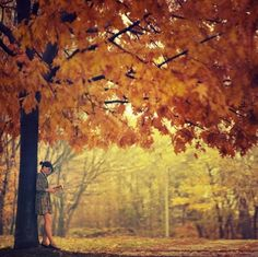autumn, beautiful, book(s), books, girl, leaves