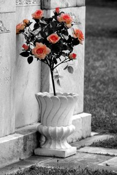 Grave Flowers 2 by *YuriPanda on deviantART