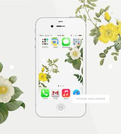 Free floral iPhone wallpaper.