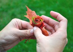 How to Make a 'Rose' from a Leaf