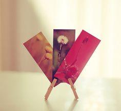 mini moo cards with mini clothes pegs