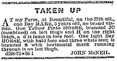 """An 1869 newspaper ad for stolen horses, published in the Deseret News (Salt Lake City, Utah), 13 October 1869. Read more on the GenealogyBank blog: """"Death, Horses & Meteors: My McNeil Family History Discoveries."""""""