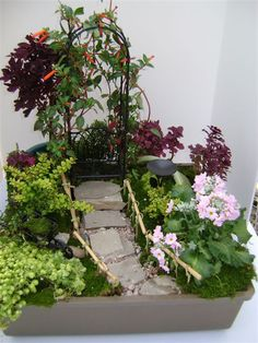 Click through for a do it yourself Fairy Garden Design. This one is called Gardeners Retreat! It features, Red Mars Coleus, Boxwood, Primrose, Moss, Flagstone, Pea Gravel, and an Arbor. Learn more at www.skh.com