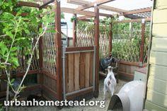housing goats