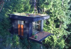 cabin, house design, dream, tiny houses, tree houses, trees, forest, cube, home offices