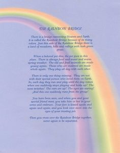 Rainbow Bridge #poem~to all my fur babies~can't wait to see you again~