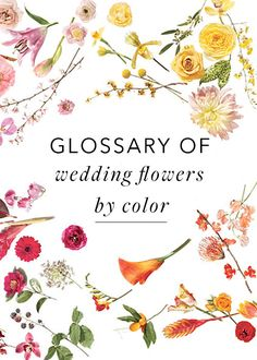 wedding flowers by color | via: brides