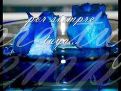 Richard Clayderman_ Woman in Love